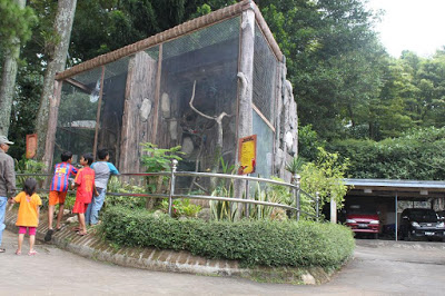 wahana rekreasi kebun binatang bandung2