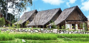 View the album dusun bambu