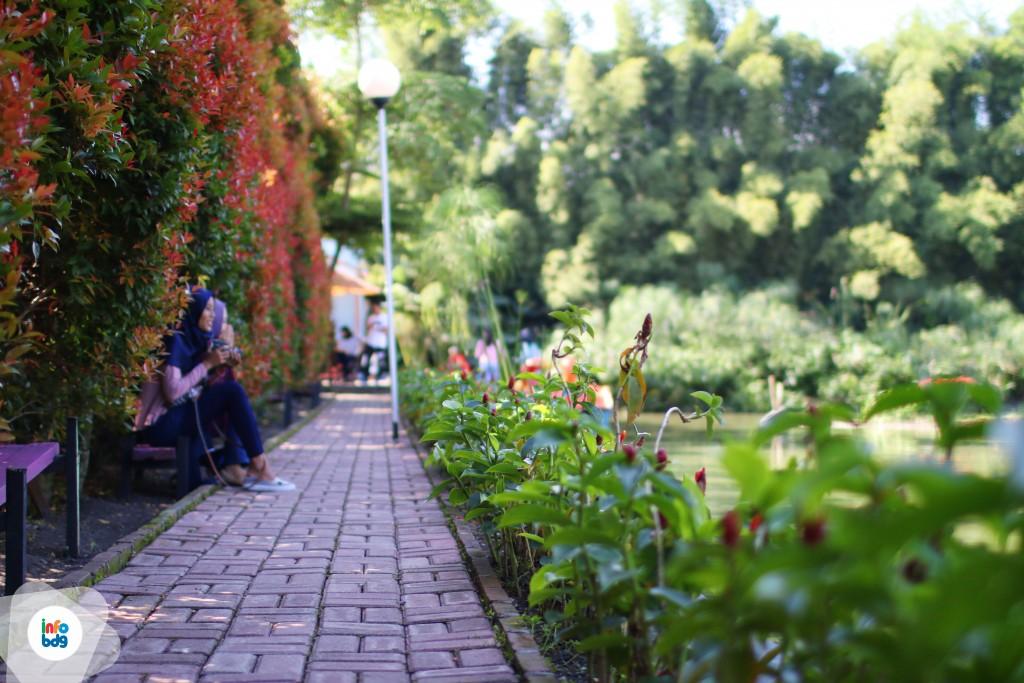 Wisata Kampung Tulip Kota Bandung Jawa Barat